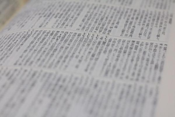 【0125】審判所の典型的な法令解釈(調査手続・理由不備・質問検査権)